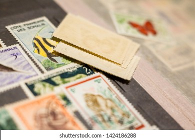 Kyiv, Ukraine -  March 24, 2019: Pile of stamps in the stamp album. Collection of stamps. Philately.