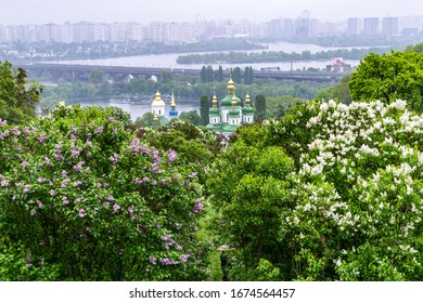 KYIV, UKRAINE - MAY 5,2019: Panoramic view of lilac flowers in Hryshko National Botanical Garden at background of Dnieper river and Vydubychi Monastery in Kyiv, Ukraine on May 5, 2019.