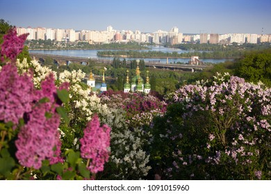 Kyiv. Vidubichy monastery over the Dnipro river in lilac blooming