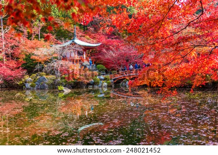 Kyoto 24 NOV 2014 , A traveler travel to Autumn at daigoji temple , Kyoto ,Japan