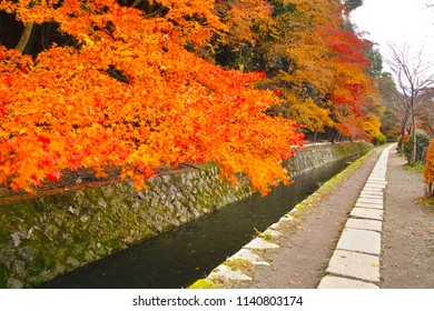 Kyoto in autumn leaves season, view from the Tetsugaku no Michi (Philosopher's Walk) in the morning