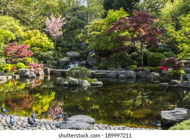 Kyoto Garden In Holland Park London UK