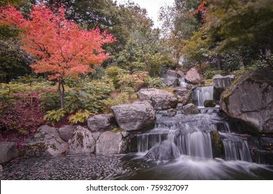 The Kyoto Gardens in Holland Park, Kensington, London- the water fall area with red and orange autumn colours