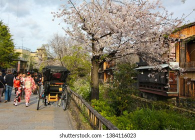 Kyoto, Japan - 2019-04-11: Busy street with women in kimonos in the Gion also known as the Geisha District, in Kyoto Japan during cherry blossom season