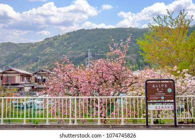 Kyoto, Japan - Apr,5 2017 : Hankyu Arashiyama Station.
