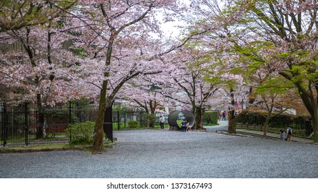 KYOTO, JAPAN - APRIL 15, 2017 : Beautiful spring scene as seen from the top of Keage Incline, which is famous and popular for beautiful cherry blossoms along railroad tracks.