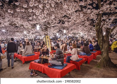 KYOTO, JAPAN - APRIL 3, 2014: Crowds enjoy the spring cherry blossoms by partaking in seasonal nighttime Hanami festivals in Maruyama Park.