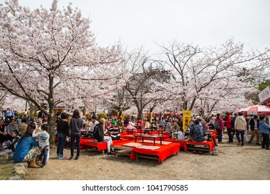KYOTO, JAPAN - April 6, 2016 : People enjoy spring season by partaking in nighttime Hanami festivals in Maruyama Park. The annual festivals coincide with the seasonal blooming of the cherry blossoms