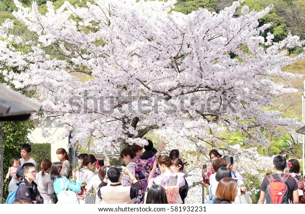 KYOTO, JAPAN- April 6, 2016. The tourists and japanese people were travelling around Kiyomizu-dera, a buddhist temple in eastern Kyoto which is a part of the Historic Monuments of Ancient Kyoto.