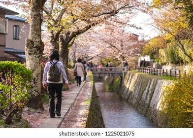 KYOTO, JAPAN - APRIL 8, 2016: Japanese locals walking along 'The Path of Philosophy', or also known as 'The Philosopher's Path' which is a well-known cherry blossom spot in Japan's Kyoto Prefecture.