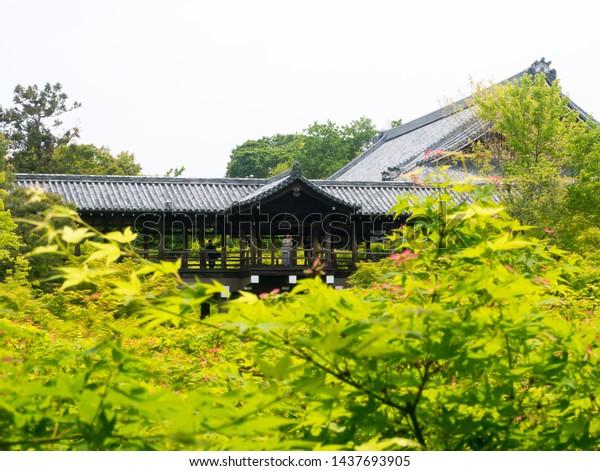Kyoto, Japan - May 10, 2019: Beautiful roofed wooden bridge of Tofukuji temple surrounded by fresh green Japanese momiji maple trees