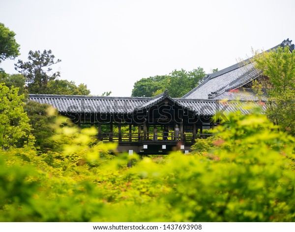 Kyoto, Japan - May 10, 2019: Beautiful roofed wooden bridge of Tofukuji temple surrounded by fresh green Japanese momiji maple trees