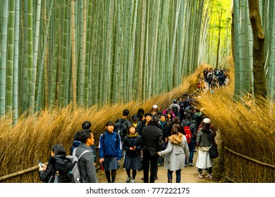 Kyoto, JAPAN. November 16, 2017; Tourist walk at the Arashiyama Bamboo grove, Bamboo garden japanese style, Kyoto, JAPAN.