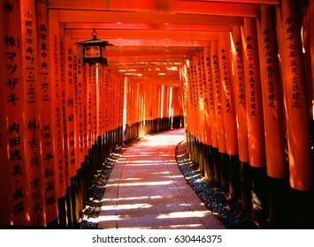 KYOTO, JAPAN - NOVEMBER 2, 2016: The traditional red Tori at Fushimi Inari Shrine, Kyoto. Editorial Use Only.