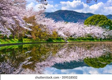 Kyoto, Japan in the Spring at Daikaku-ji Temple's pond.