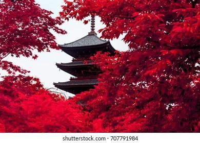 Kyoto Toji Five-storied Pagoda in Red