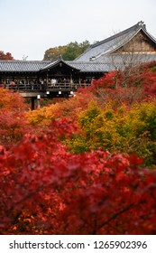 KYOTO,JAPAN - 26 November 2018: Tofukuji temple is one of the most popular place to see red maple during late autumn of Japan