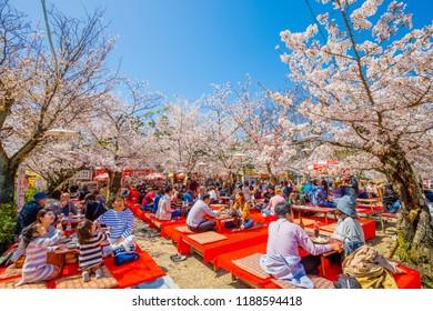Kyoto,Japan - March 30, 2018: Maruyama Park is a public park next to Yasaka Shrine in the Higashiyama District Kyoto,Japan.