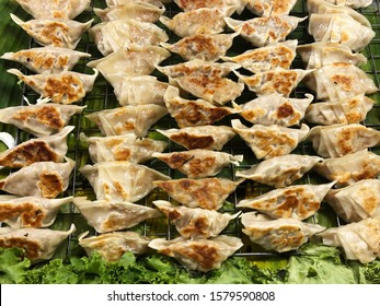 Kyoza on prepared tray, and Gyoza is popular fried Japanese dumplings, an Asian traditional delicious appetizer of Japan.