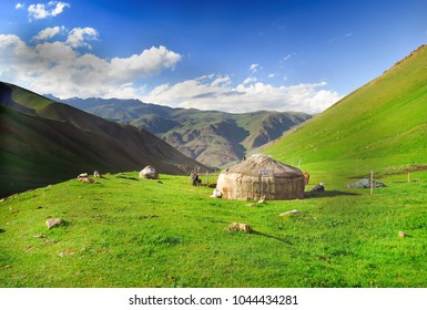Kyrgyzs yurta on a green pasture
