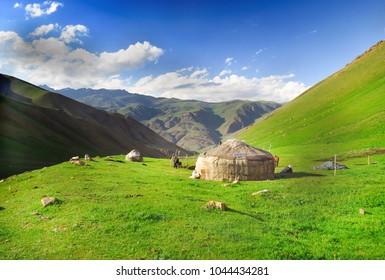 Kyrgyzs yurta on a green pasture