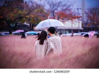 Kyung-Joo, Korea - Nov 12, 2018 : Muhlenbergia Capillaris and a couple