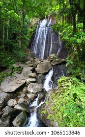 La Coca Falls in the famous El Yunque Rainforest of Puerto Rico