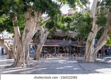 La Gomera, Canary islands -march 20, 2019: Centennial trees and bar terrace in the Plaza de la Constitucion in the urban center of the city of San Sebastian de La Gomera, capital of the island