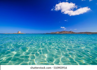 La Pelosa, Stintino, Sardinia, is one of the most beautiful sandy beaches of the Mediterranean. Turquoise water. La Pelosa Beach, Sassari, Sardegna, Italy.
