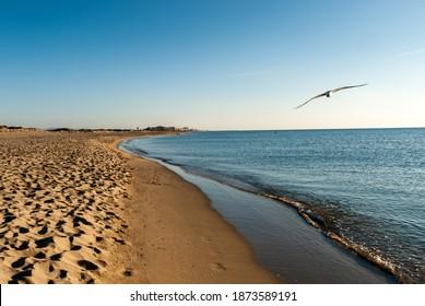 La Plage Sud de Canet en Roussillon, Perpignan, France - Shutterstock ID 1873589191