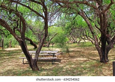 La Posta Quemada Ranch picnic area near the cowboy statue in Colossal Cave Mountain Park in Vail, Arizona, USA near Tucson.