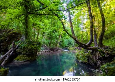 La Vaioaga waterfall, Cheile Nerei National Park, Caras Severin, Romania