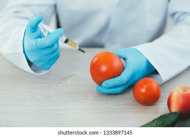 lab technician in Bathrobe and gloves colitis nitrates and GMO in tomato on white background in lab