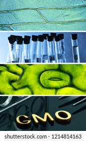 Laboratory collage, tissues, cells