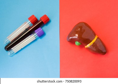 Laboratory diagnosis of metabolic function, diseases, biochemical violations, damage and abnormalities of liver. Liver and laboratory test tubes lie opposite each other on red and blue backgrounds