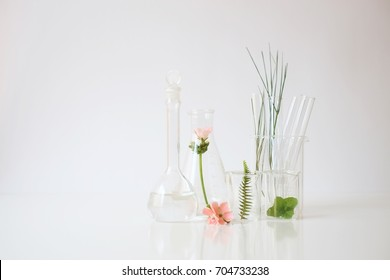 laboratory experiment and research with leaf, oil and ingredient  extract for natural beauty  and organic skincare product package,bio science concept. alternative medicine. spa