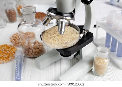 Laboratory for food analysis cereals test no one wooden background
