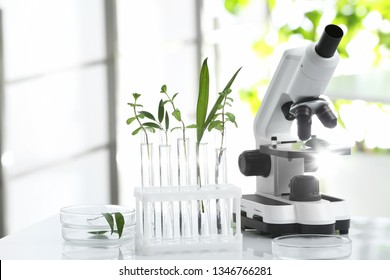 Laboratory glassware with different plants and microscope on table against blurred background. Chemistry research