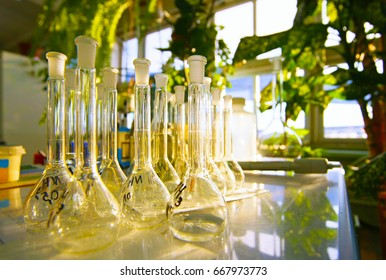 Laboratory glassware. Flasks
