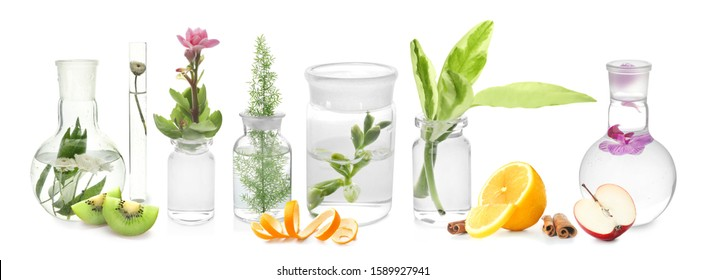 Laboratory glassware with plants and fruits on white background