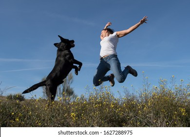 Labrador dog with middle-aged woman jumping together with joy in nature.