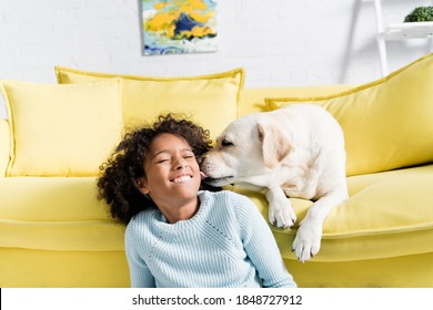 labrador licking girl cheek, while lying on yellow sofa at home