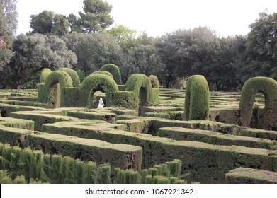Labyrinth in Park