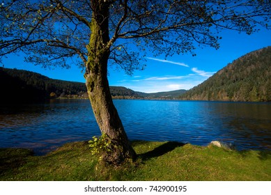 Lac de Longemer in the Vosges mountains in France