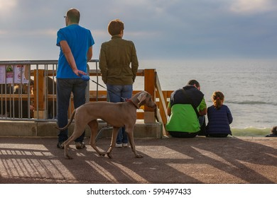 LACANAU, FRANCE - March 11, 2017: Couple standing looking at the view and walking their dog