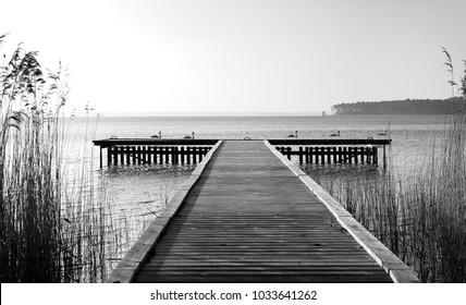 Lacanau lake in The Gascon Landes Regional Nature Park
