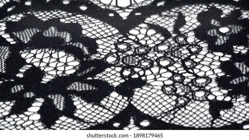 lace fabric. bird feather. lace color black on a white background.
