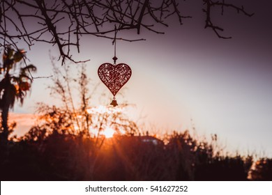 Lace metal heart decoration hanging on a tree branch at the sunset in the golden rays, St. Valentine's romantic  love symbol. Charity concept. Inspirational image with copy space