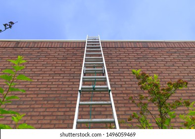 ladder brick wall blue sky success way dreams aspirations