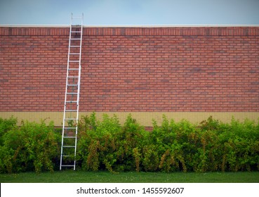 ladder business solution brick wall